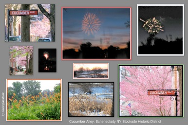 cherry blossoms, fireworks and more seen from Cucumber Alley in the Schenectady NY Stockade