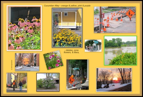 collage of photos with the color orange plus blossoms on Cucumber Alley in the Schenectady NY Stockade