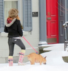a dogwalker passes 10 Front St. after a major snow storm - Schenectady NY Stockade - 9 AM 09Feb2013