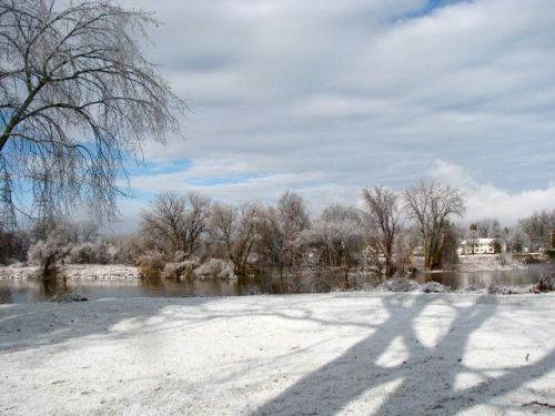 - rear of 16 Washington Ave., icestorm, Dec. 12, 2008 -