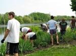 Planting Day 09c