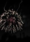 Fireworks – Jumpin' Jack's 2009d
