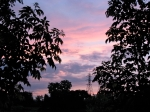 Sunset – from the rear of 16 Washington Ave. –07Jun09b