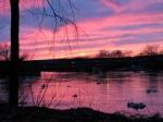 late sunset – 11Mar09 – from rear of 16 WashingtonAv