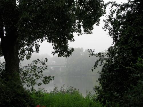 fog behind 16 Washington Ave., Schenectady Stockade - 7 AM, 10Aug2009