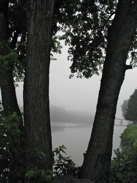 looking eastward over the foggy Mohawk River from Washington Ave. - 10Aug09