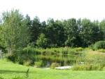 Miner's Farm Swimming Pond, Duanesburg, NY27Aug09