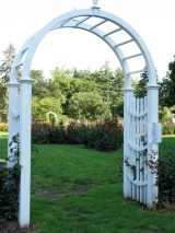 Central Park Rose Garden 2009 - entryway arbor