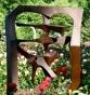 """Schenectady Rose Garden 2009 Chinese Character """"Yuan"""" (Garden)"""