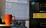photo showing the proximity of my desk to the window inquestion