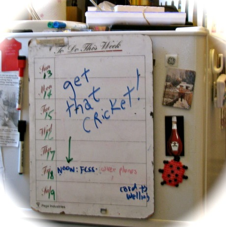 "Refrigerator To Do List - ""Get that Cricket!"" - 18Sep09"