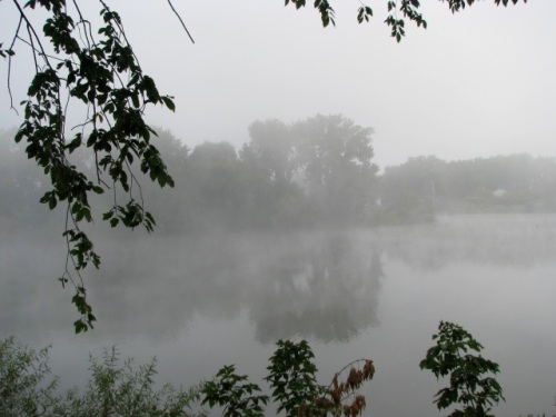 Isle of the Cayugas in the fog from Cucumber Alley - 8:30 AM - 21ep09