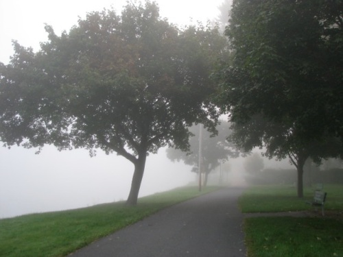 Mohawk Fog along the pathway at the western end of Riverside Park - 21Sep09