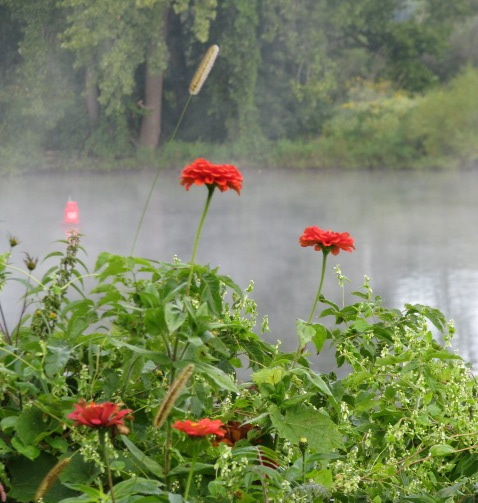 mist and Isle of the Cayugas behind Riverside Park flowers - 8 AM 21Sep09