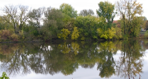 south side of the Isle of the Cayugas reflected in the Mohawk River - 24Oct09