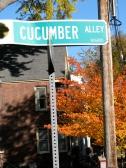 Cucumber Alley street sign, Schenectady Stockade - 26Oct09