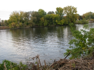 Isle of the Cayugas and Mohawk River seen from 16 Washington Ave. backyard - 20Oct09