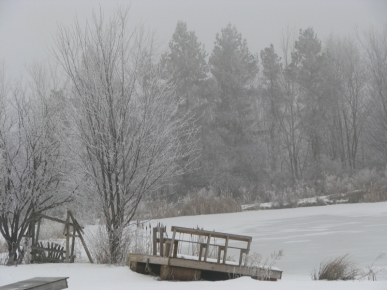 the Miner's swimming pond iced over on Christmas Day in Duanesburg NY - 25Dec09