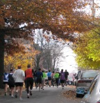 autumn colors and Stockade-athon 2011 runners on Washington Ave. - Schenecady NY Stockade - 13Nov2011