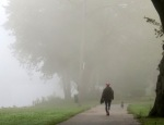 dogwalker heads into the fog