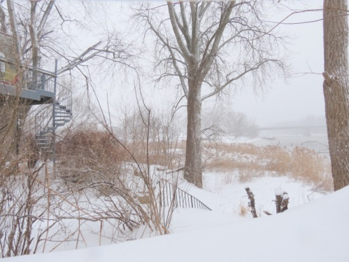 scene at the rear of 1 Cucumber Alley along the Mohawk River - 27Dec2012
