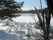 ice floes are beached in the backyard of No. 1 Cucumber Alley in the Schenectady Stockade, along the Mohawk River - 03Feb2010