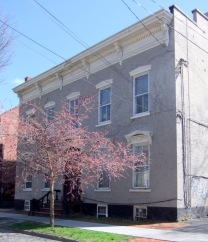 first cherry blossoms appear at 27 Washington Ave. in the Schenectady NY Stockade - 21Apr2013