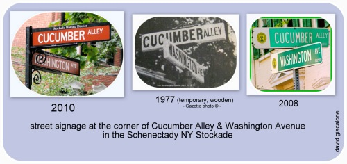 Cucumber Alley Street Signs