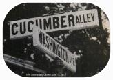 CucumberAlleySign-Gazette15Jun1977