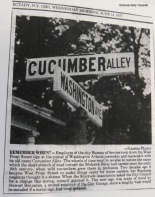 "photo and commentary about a temporary wooden street sign ""Cucumber Alley"" in the Schenectady Gazette - 15Jun1977"