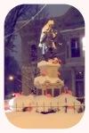 StockadeFlamingos13Feb2014v-001
