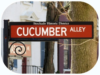Historic Stockade District street sign for Cucumber Alley at Washington Avenue