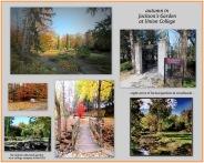 JacksonsGarden-Autumn