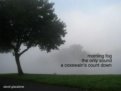 fogcoxswainhaiga