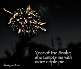 SnakePieHaiga