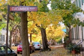 stockade-cuc-wash-autumn