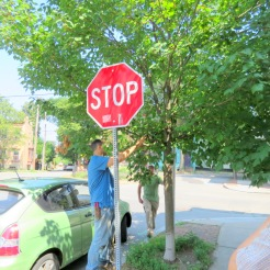 efforts to make the Stop sign visible could have been better planned