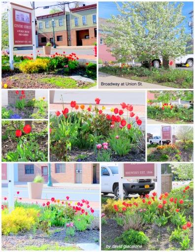 CentreStPub-flowersE