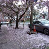 2 Union Street - April 17